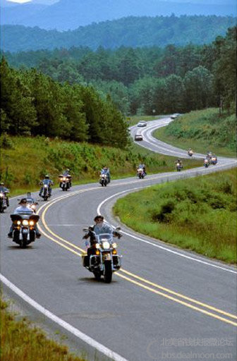 motorcyclefoliage.jpg