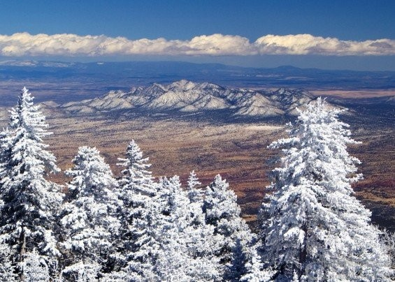 The_Sandia_Mountains-565x404.jpg
