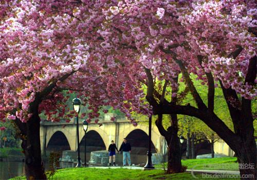 5fairmount_park_walking.jpg