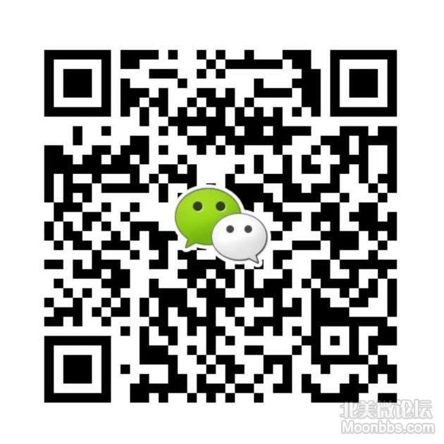 310334645554008353.jpg
