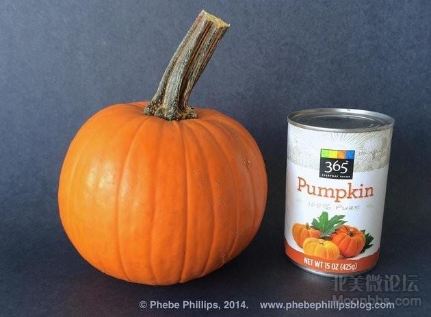 Sugar-Pie-Pumpkin-Puree-vs-Canned-Puree.jpg