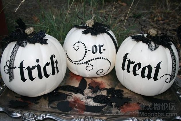 white pumpkins.jpg