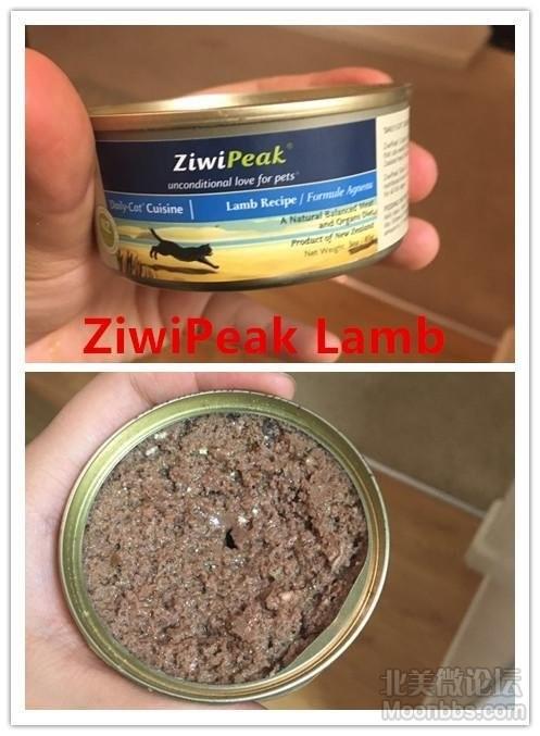 Ziwi3.jpg