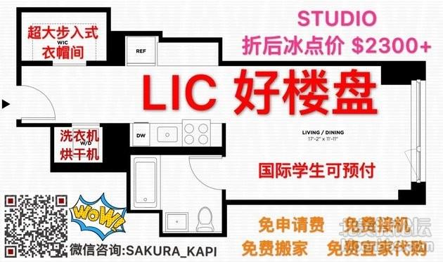 LIC.jpg