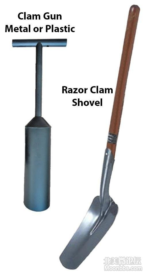 Razor-Clamming-Tools.jpg