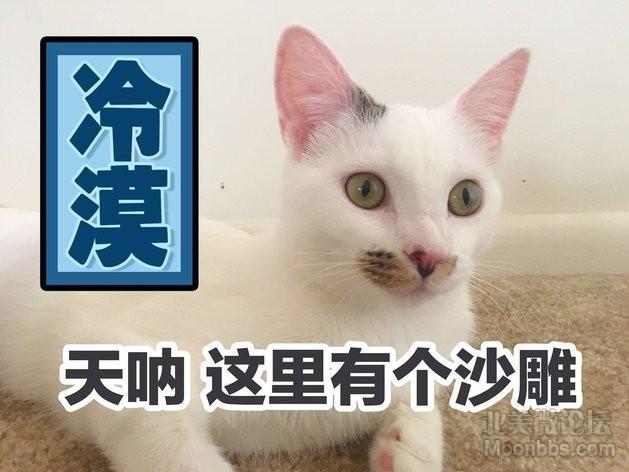 WeChat Image_20180730145955.jpg