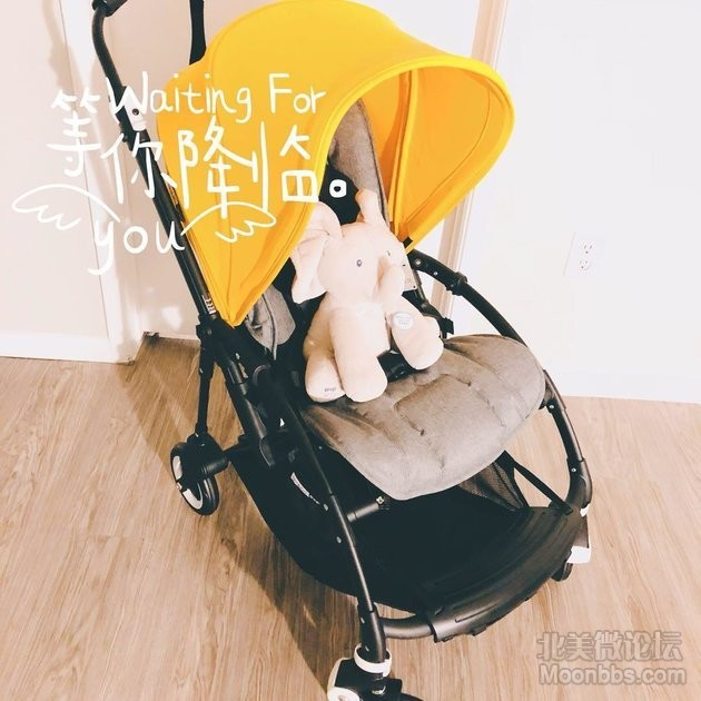 WeChat_1534032321.jpeg