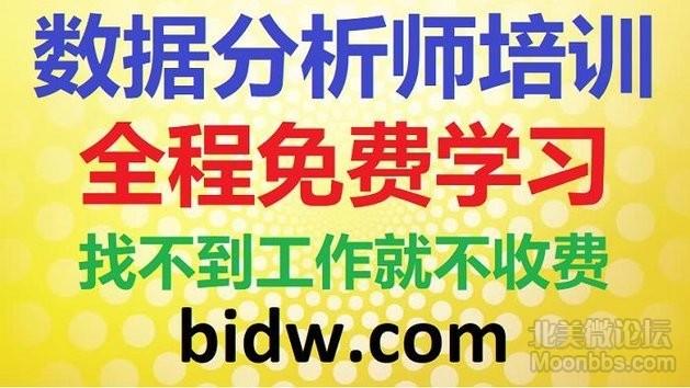 bidw.png