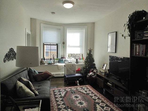 114 Willow St. #114-02 Cambridge - East Cambridge Shared Unit Photo 4.jpg