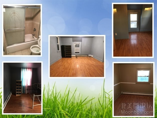 Renting house 29 plymouth.jpg