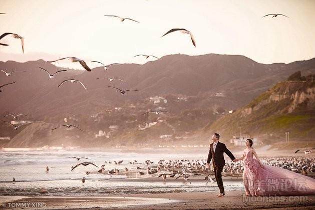旧金山洛杉矶婚纱照 Tommy Xing Wedding Photography 22.jpg
