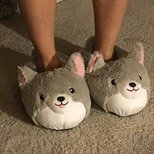 男朋友买的新拖鞋