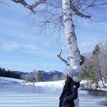 【Winter Wonderland】温度比风度要紧