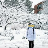 【winter wonderland】白鹅