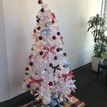 【圣诞树】家里和公司的第一颗圣诞树