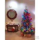 【圣诞树】各个旅馆的圣诞树~