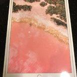 Best Buy iPad Pro