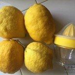 #经验#挤柠檬汁神器
