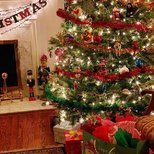 【圣诞树】今年算是祈愿树!