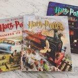 超精美的哈利波特插画书