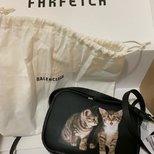 太喜欢这个猫咪包了