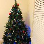 【圣诞树】新家第一颗圣诞树