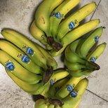 #经验#Trader joes的蔬果