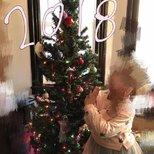 【感恩节装扮】圣诞树
