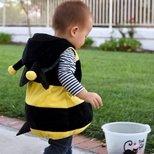 """【奇装异服】""""偷""""南瓜的bumble bee"""