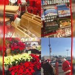【Christmas Delight】豆子的圣诞快乐简介