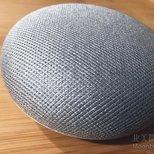 Google homemini
