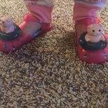 猪年来双小猪鞋