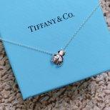 #经验#Tiffany Ladybug