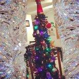 【圣诞树】美好记忆的合集。