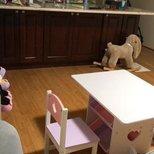 amazon 买的kidkraft 桌椅和storage bin