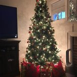 【我家的圣诞树】-2018