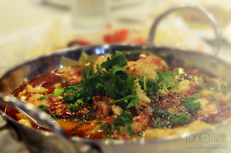 3.Chengdu Taste1.jpg