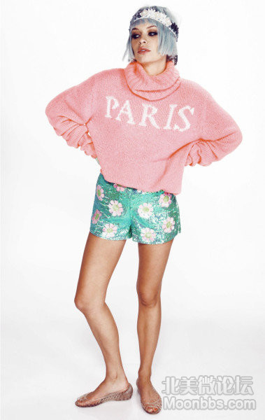 wildfox-couture-brown-paris-is-home-seattle-sweater-product-1-14338200-1-0749334.jpeg