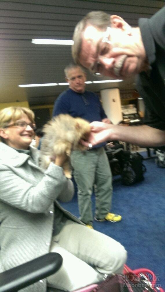 机场的人抢着抱它