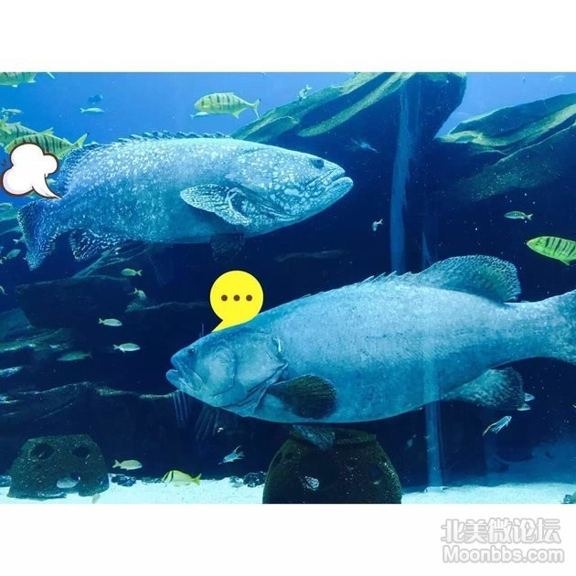 WeChat_1461794200.jpeg