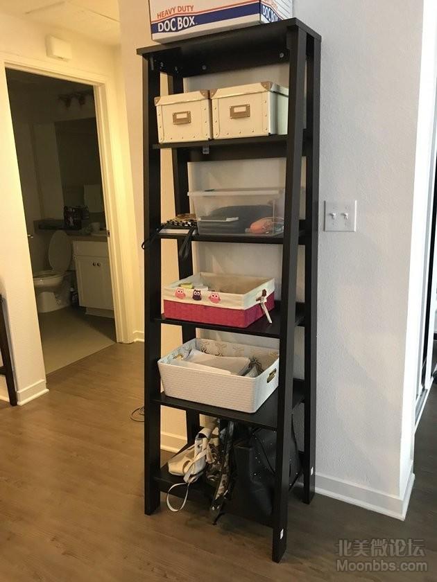 ladder_bookcase.JPG