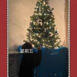 【我家圣诞树】有猫和刚走路的娃 配吗?