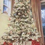 我家圣诞树(neutral风格)