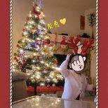 【我家圣诞树】家有萌娃后的第一棵圣诞树
