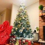 【我家圣诞树】树,平安夜的仪式感