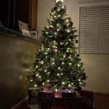 【我家圣诞树】第一次装饰,希望来年装饰得更美!