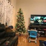 我家圣诞树