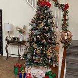 【我家圣诞树】给狗子来照相