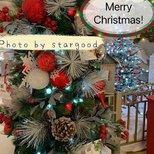 【我家圣诞树】漂亮的圣诞树