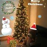 【我家圣诞树】小小一颗圣诞树